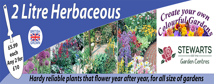 2l herbaceous banner.jpg